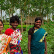 female-cotton-workers-india-credit-better-cotton-initiative