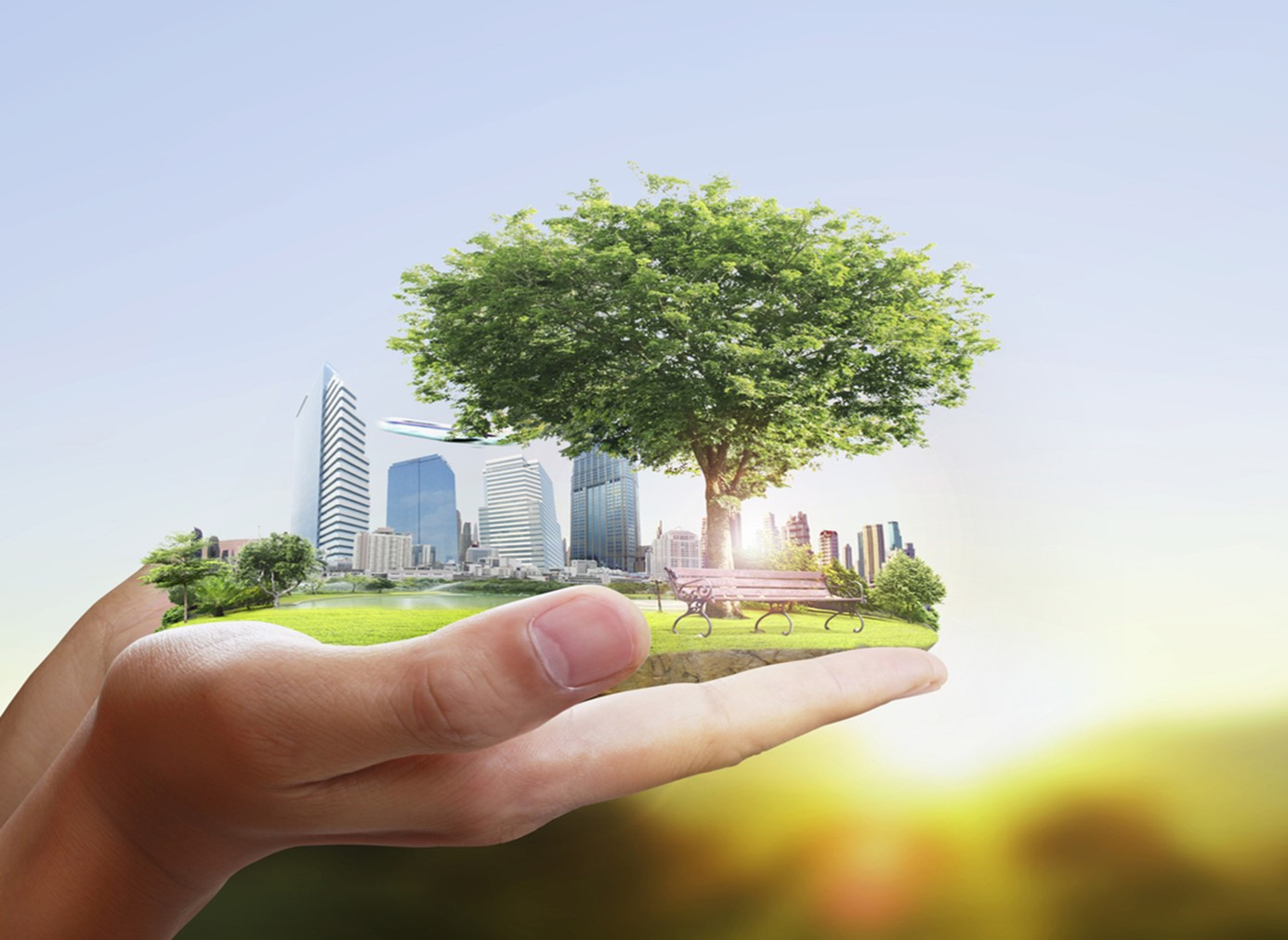 Sustainability main page photo
