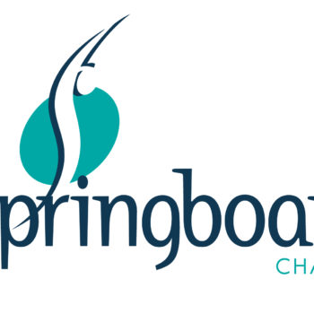 the-springboard-charity-logo